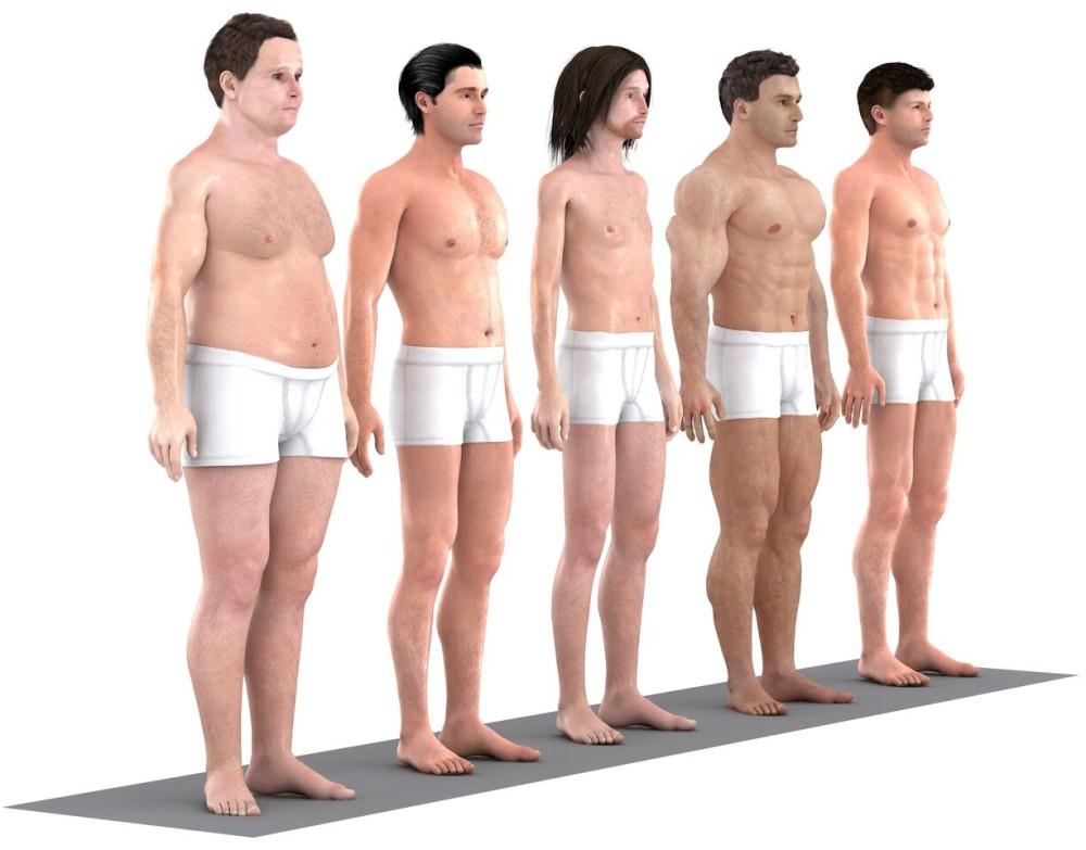 Which is your ideal male body?