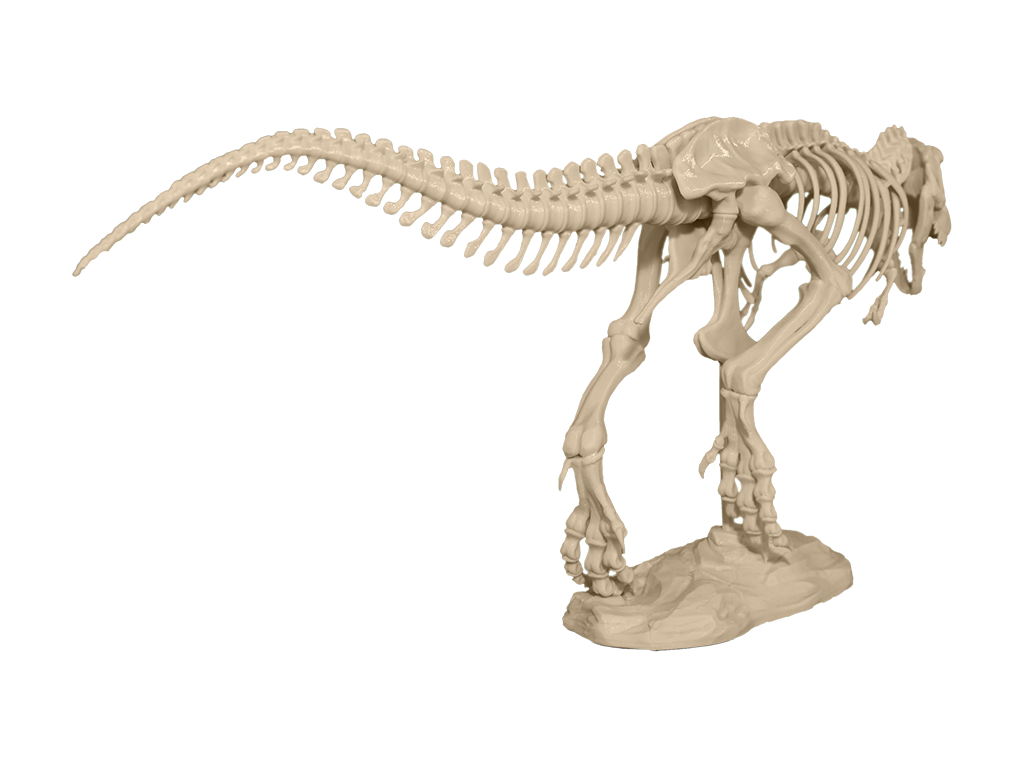 You Can Now 3D Print Your Own 79 Piece T-Rex Skeleton ... - photo#30