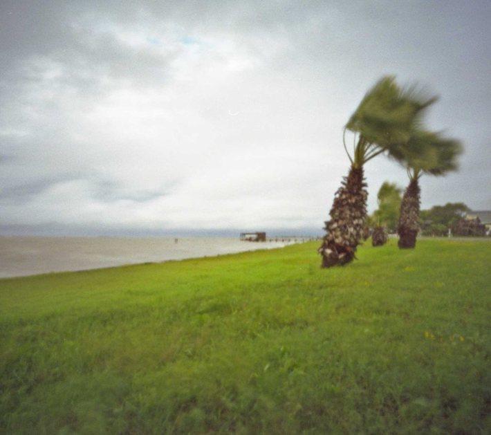 magnolia beach taken w pinhole camera
