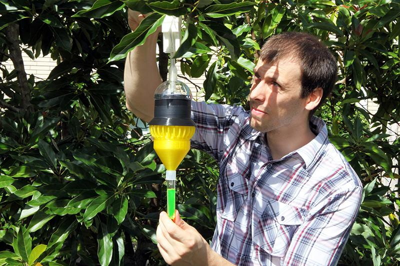 Florida Scientific Research Team Develops 3D Printed Insect Trap to Stave Off Crop Damage