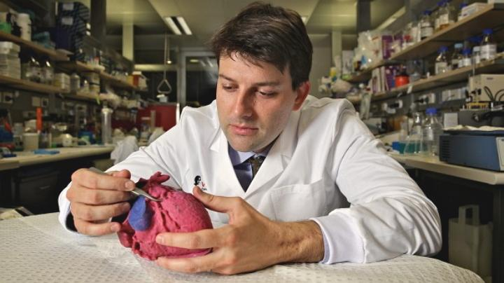 3D Printed Heart Models Help Doctors Size Cardiac Watchman Device