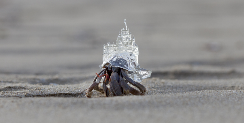 Another Hermit Crab Gets a New Home in a 3D Printed Japanese Wedding Chapel Shell