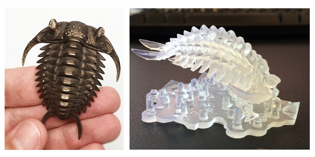 Showcasing the Beauty of a Trilobite through 3D Printing