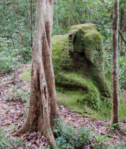A ruined statue hidden in the jungles of Cambodia near Angkor Wat.