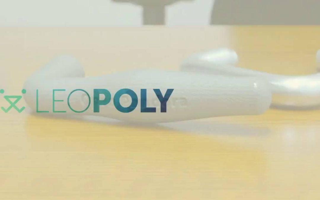 Leopoly Intro