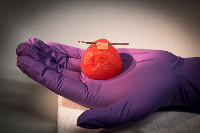 New 3D Printed Organ Models Don't Just Look Like Real Organs, They Feel and React Like Them Too