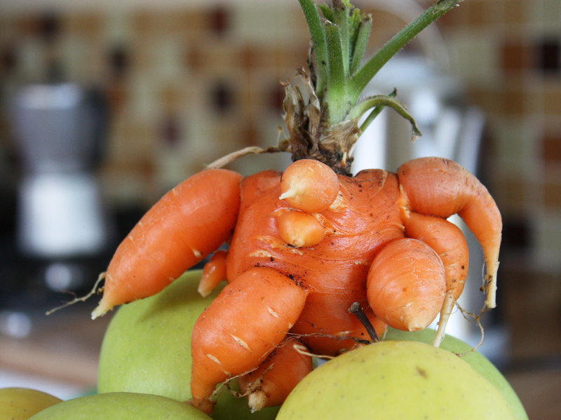 South Africa's First Food 3D Printer Turns Ugly Produce into Attractive Nutrition