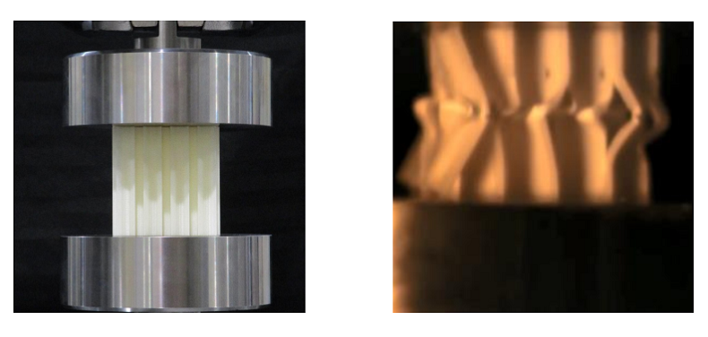 College of Maryland: 3D Printing Honeycomb Buildings with Buckling Initiators for Crash Mitigation