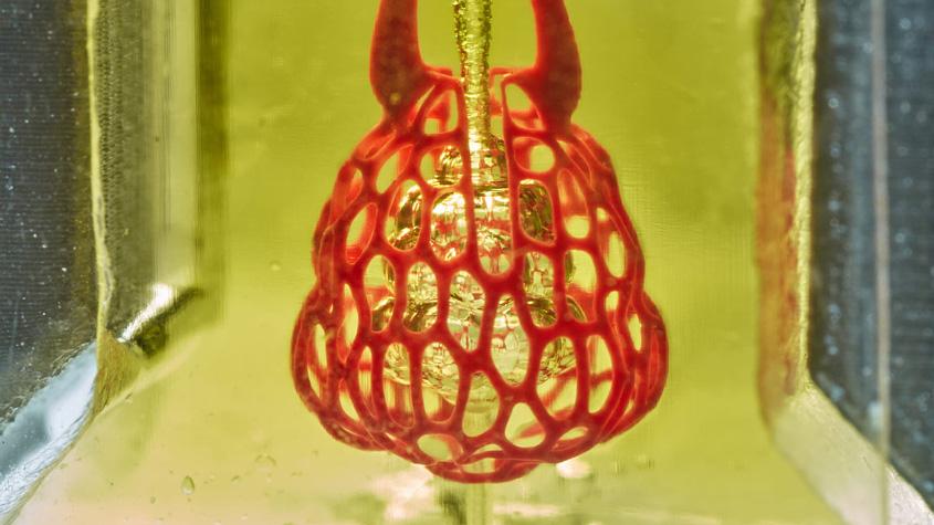 Bioengineer Jordan Miller: Medical Trials for 3D-Printed Organ Replacements Might Begin in 5 to 10 Years 2